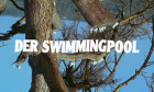 Swimmingpool, Der