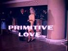 Primitive Liebe