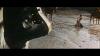 8048_Fuenf-blutige-Stricke-screenshot01.png