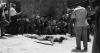 7279_Wer-erschoss-Salvatore-G-screenshot01.png