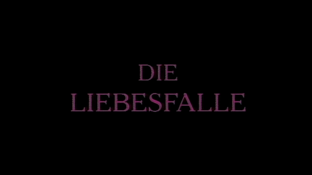 Liebesfalle - Love Web